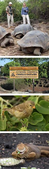 Estación Charles Darwin en Galápagos