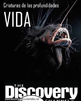 documental vida criaturas de las profundidades discovery channel