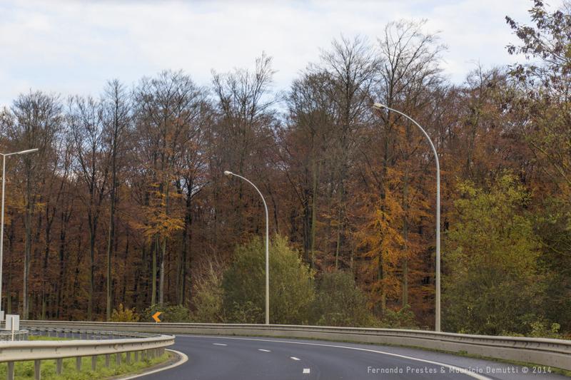rodovia de luxemburgo e cores do outono