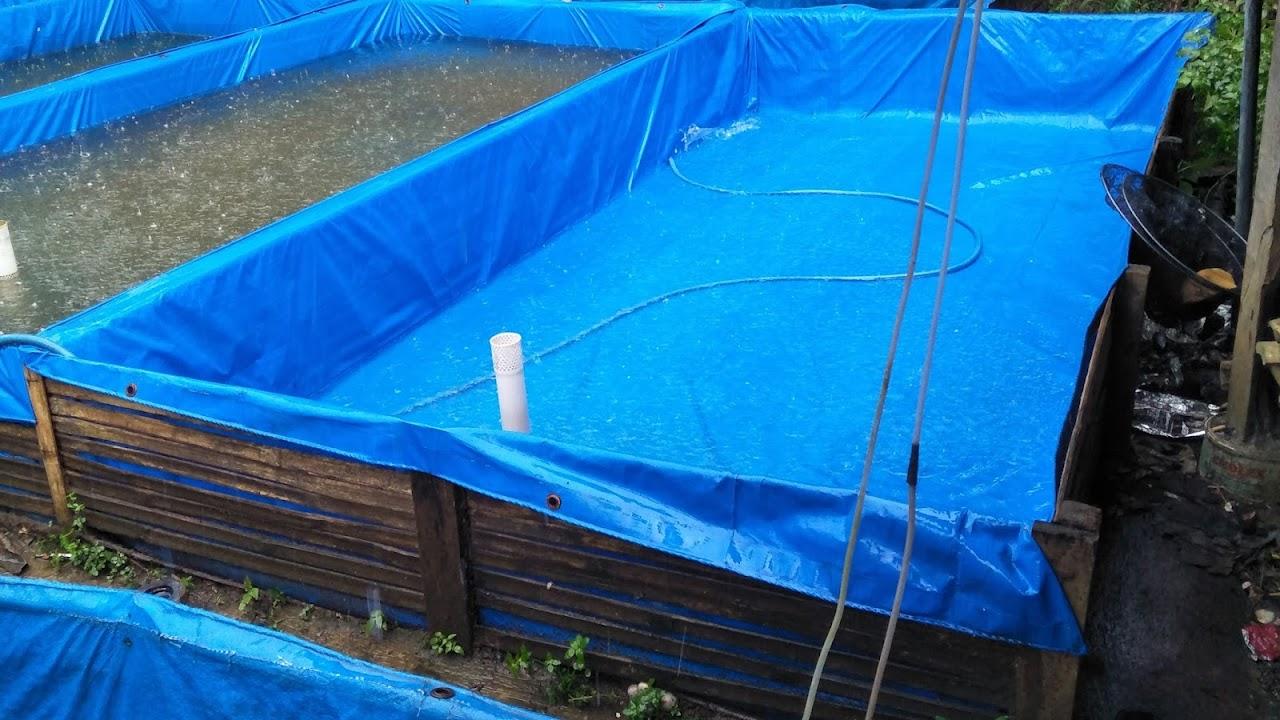 Pembuatan Kolam Terpal Ikan Mujair