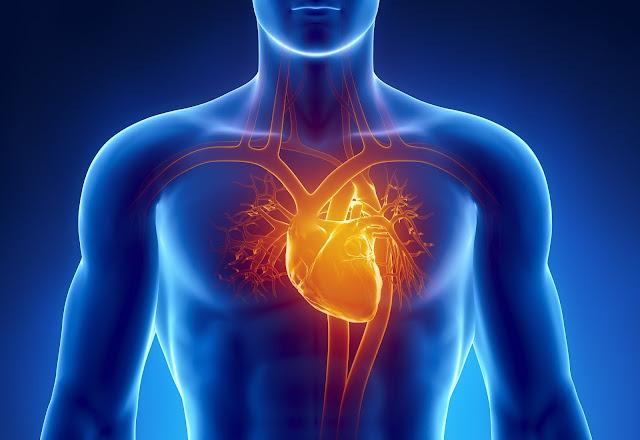 भारत में हृदय रोग मृत्यु का सबसे बडा कारण