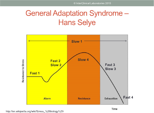 General Adaptation Syndrome (GAS) Stages