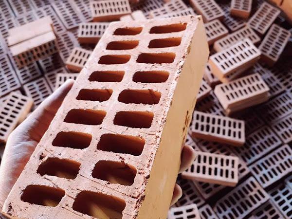 Jual Bata Expose Bolong (Hollow Brick)