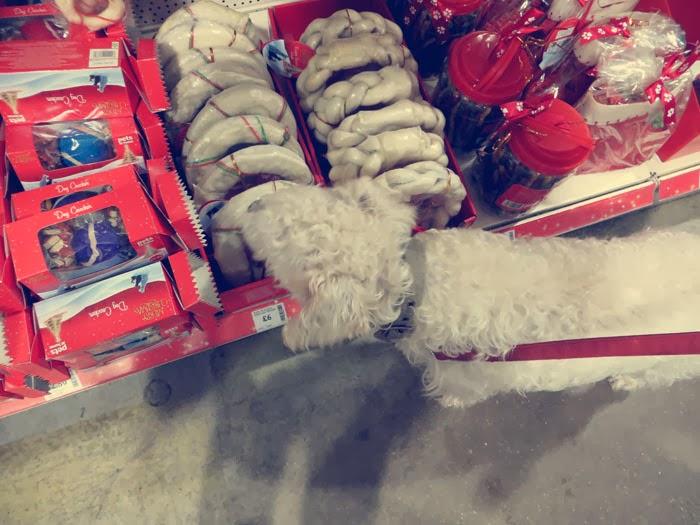 pets at home christmas range