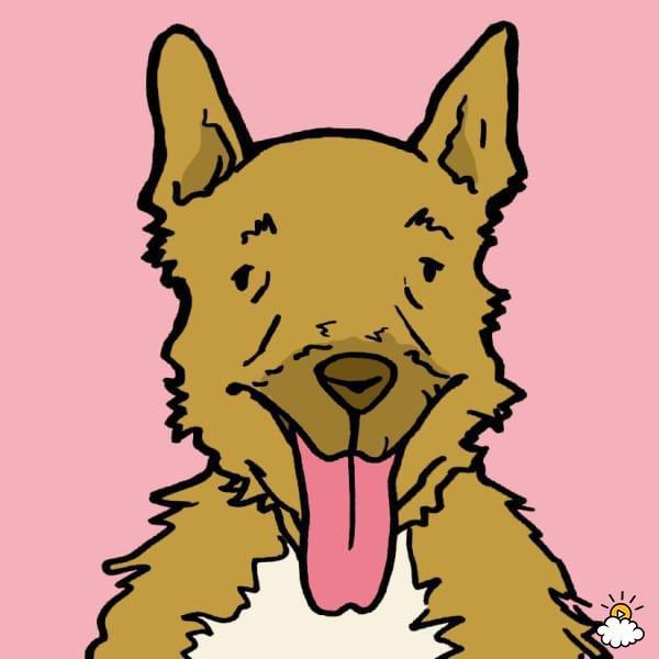 Θερμοπληξία σκύλων:Πρόληψη, Συμπτώματα, Αντιμετώπιση
