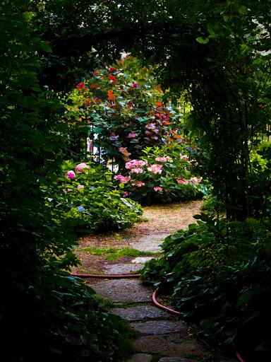 Allen Centennial Gardens - Madison WI