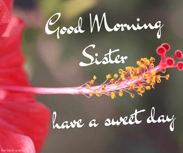 good morning sister have a sweet day