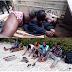 Robbers charm SARS operatives to escape from custody - Photo