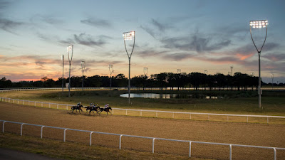 Chelmsford Horse Racing