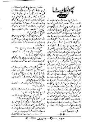 Phopo ka beta novel pdf by Sabahat Rafiqe Cheema