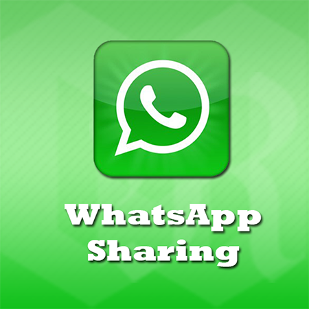 How To Send Any Type Of File On WhatsApp