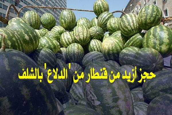"""حجز أزيد من قنطار """"دلاع"""" معروضة بطرق غير صحية بالشلف"""