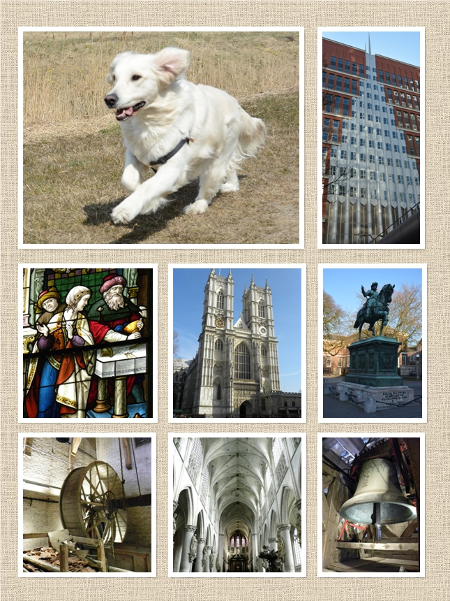 Collage The Hague Mechelen