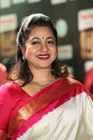 Radhika Sarathkumar (1).JPG