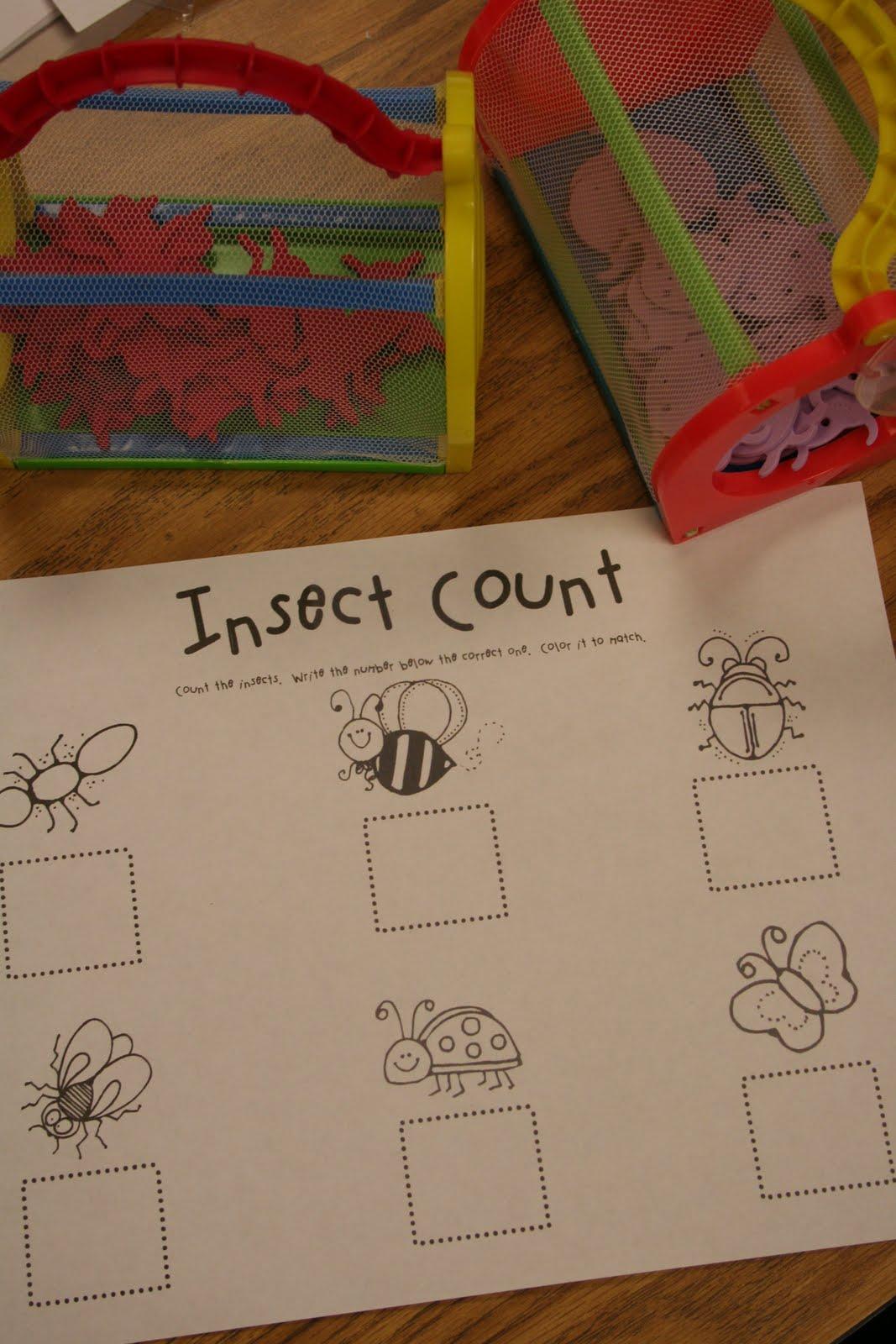 Mrs Lee S Kindergarten Bugs Bugs Bugs