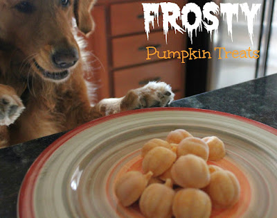 healthy halloween treats for dogs frosty pumpkin dog frozen treats
