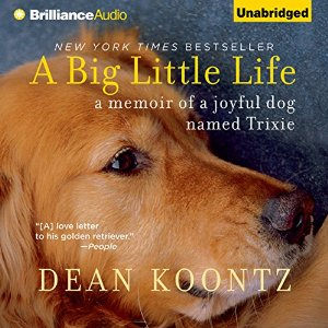 blithely bookish reviews a big little life a memoir of a