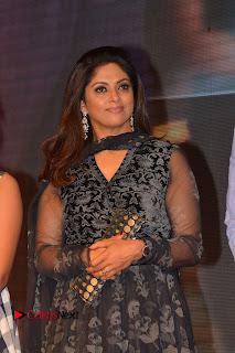 Actress Nadhiya Pictures At A Aa Movie Success Meet 0007