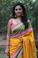 Actress Srushti Dange Latest Pos in Yellow Silk Saree at Saravanan Irukka Bayamaen Tamil Movie Press Meet  0009.jpg