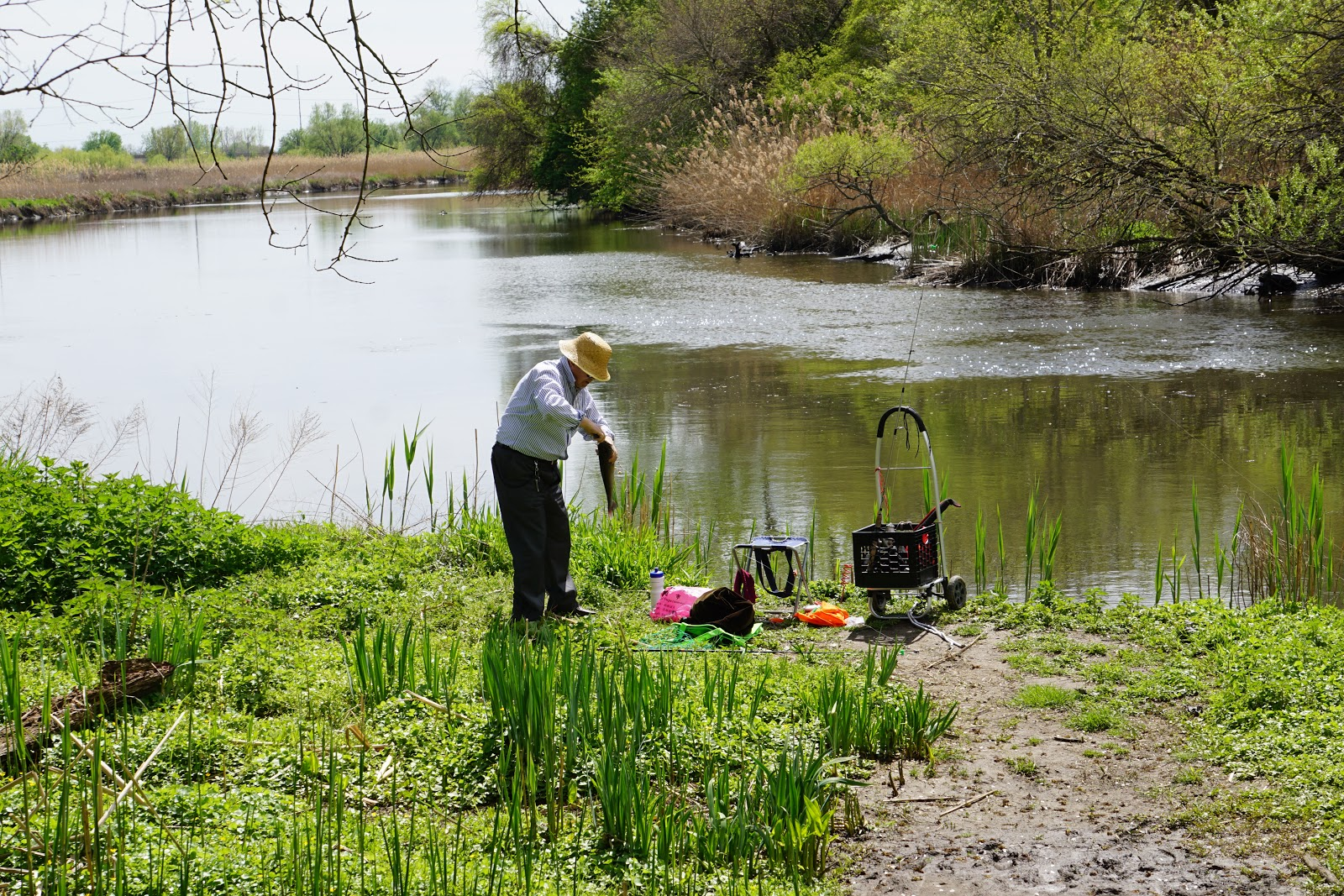 Delco daily top ten gone fishing for Pa fish stocking