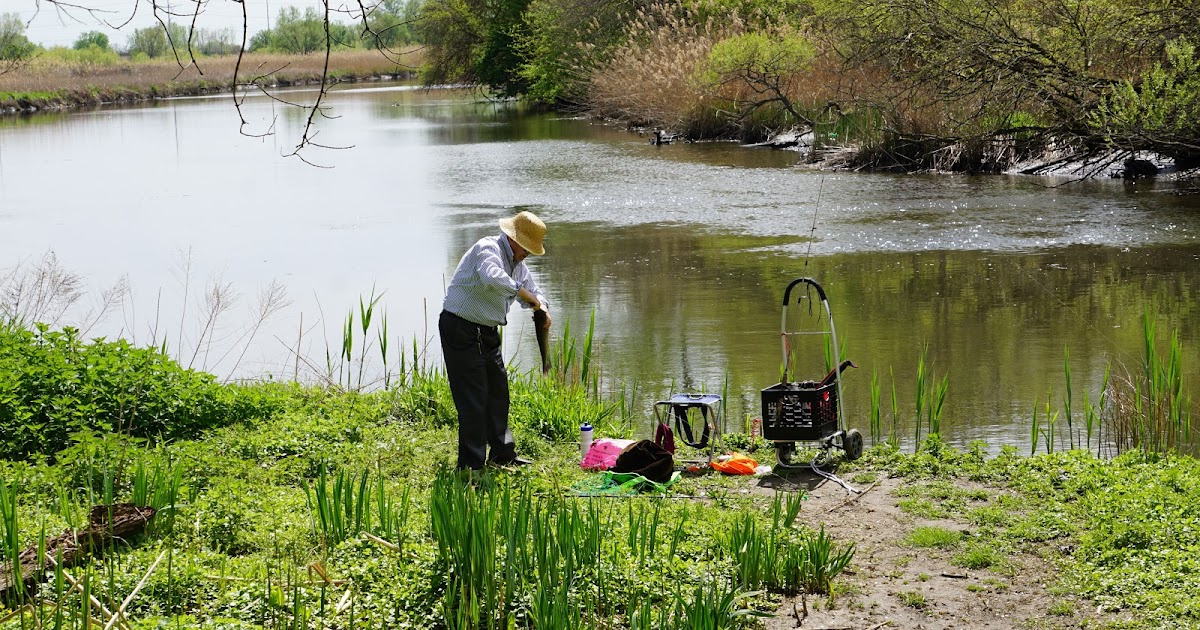 Delco daily top ten gone fishing for Fishing license pa cost