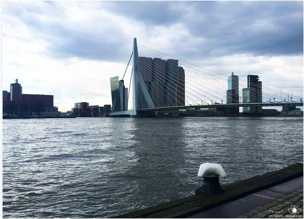 My Travel Background : pourquoi je suis tombée amoureuse de Rotterdam - Le pont Erasme