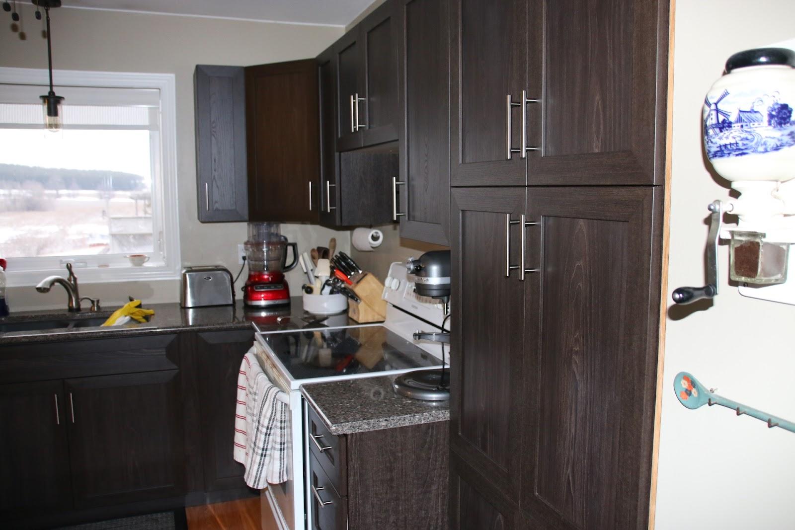 Golden Oak Kitchen Cabinet Doors