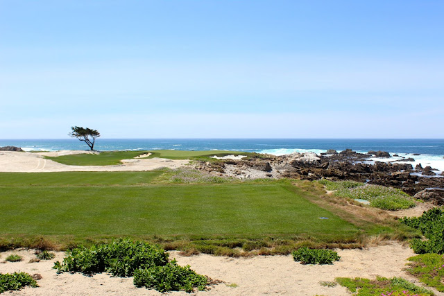 pebble beach golf course, 17 mile drive, road trip from san francisco to big sur