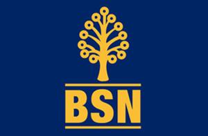 Jawatan Kosong di Bank Simpanan Nasional - 21 April 2016