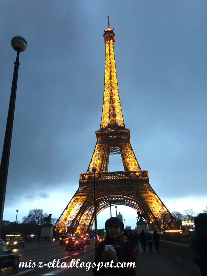 The Eiffel Seine Hotel Eurostar Eiffel Tower Paris