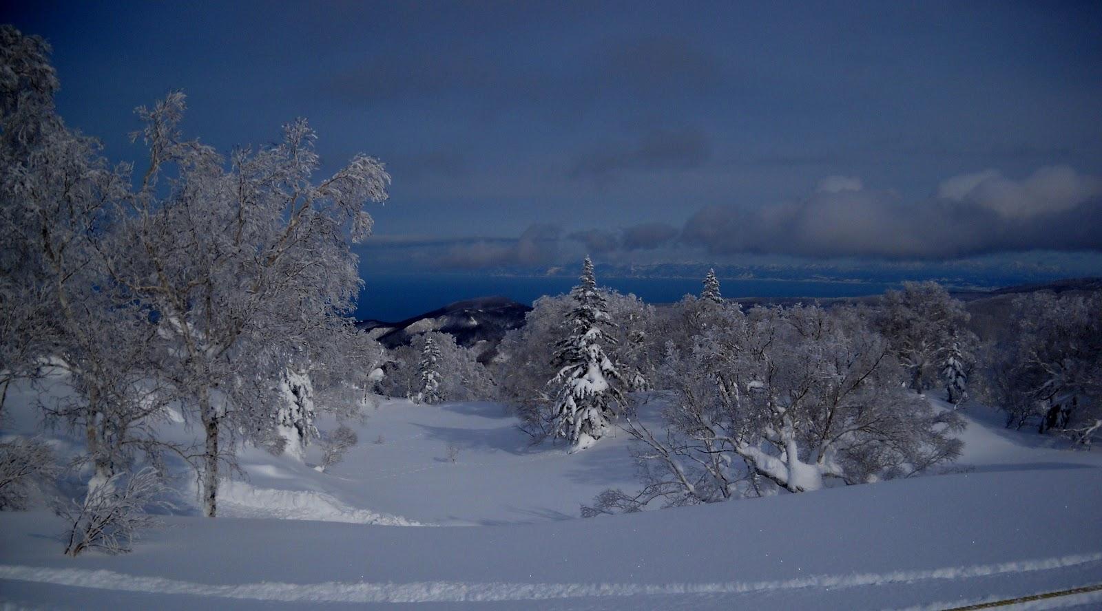Wings 'n Things: Hokkaido snow, 北海道 の 雪