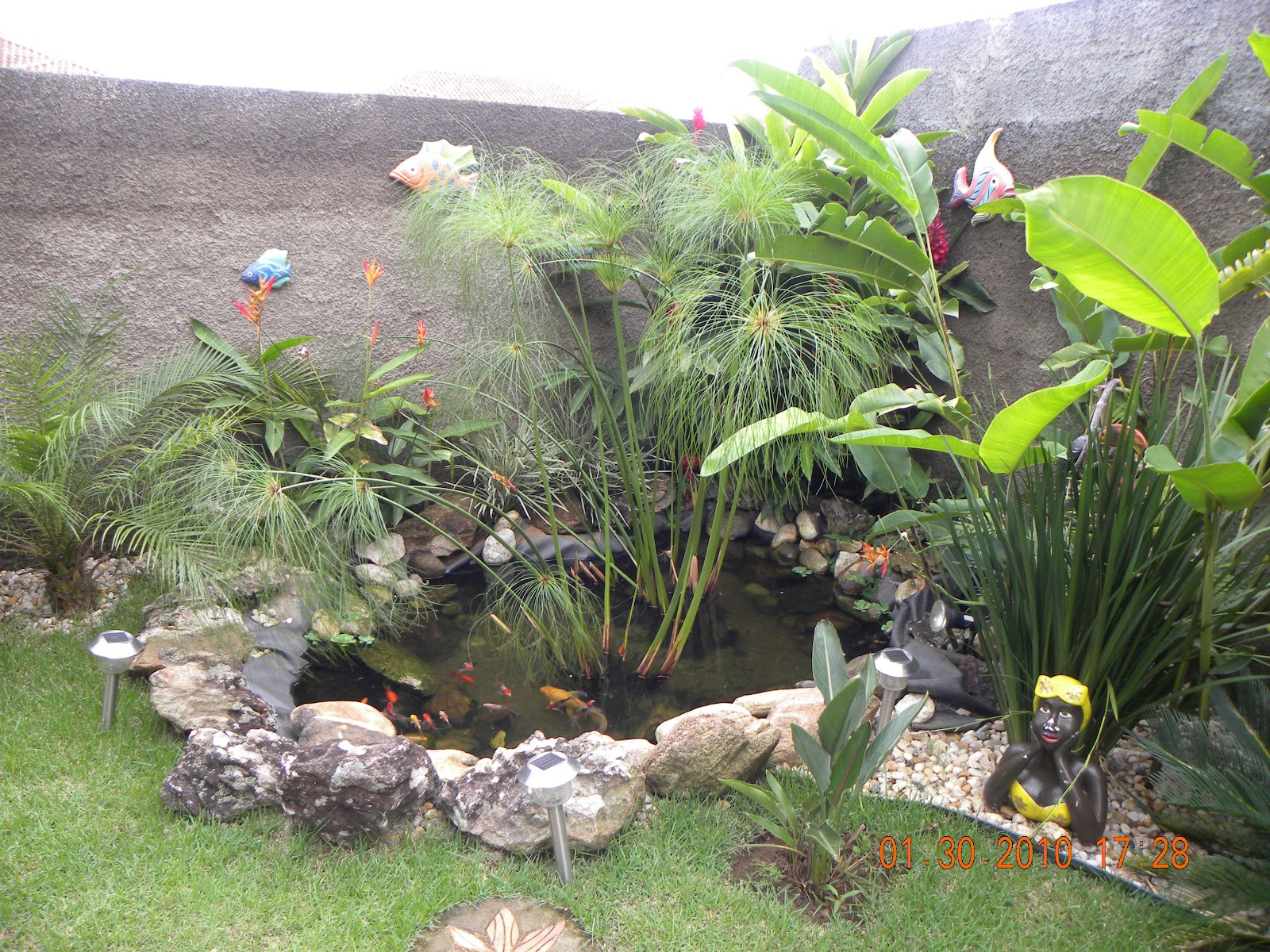 Viva arquitetura y design jardim com lagos for Plantas para estanques pequenos