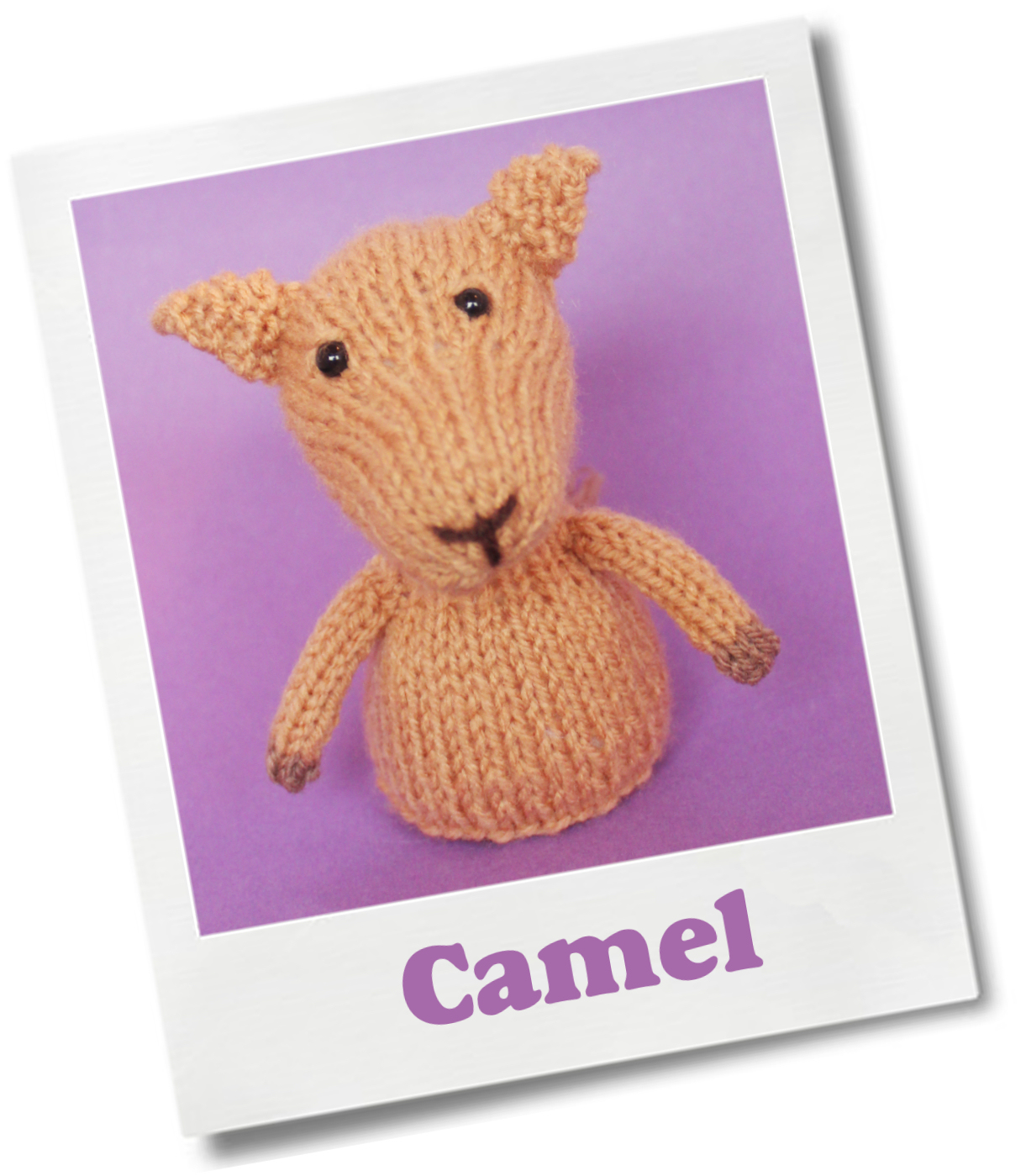 Jelly Bums: Camel Knitting Pattern