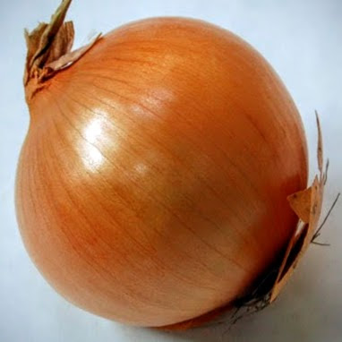 My Dog Ate Some Onion, Is This Dangerous?