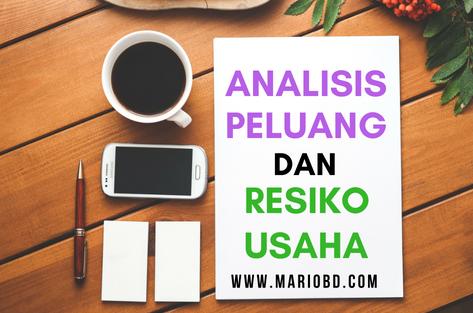 Analisis Peluang Dan Resiko Usaha Beserta Penjelasan Mario Bd