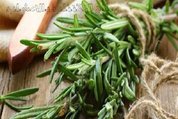 علاج الاكتئاب بالنباتات والأعشاب