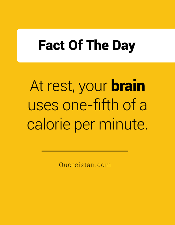At rest, your brain uses one-fifth of a calorie per minute.