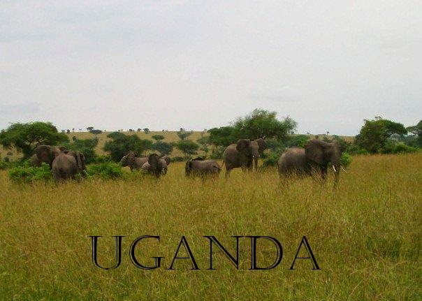http://thriftygypsytravels.blogspot.com/2014/03/destination-uganda.html