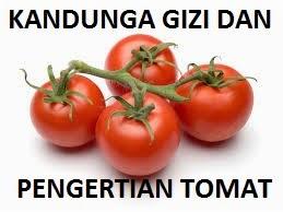 15 Manfaat dan Khasiat Tomat Ceri untuk Kesehatan
