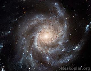 pinwheel galaksisi nedir?