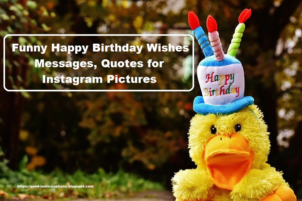 Funny Happy Birthday Wishes Messages, Quotes for Instagram Pictures