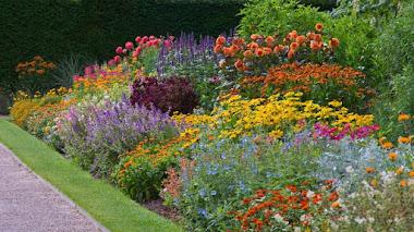 Las espectaculares borduras de verano en Nymans Gardens