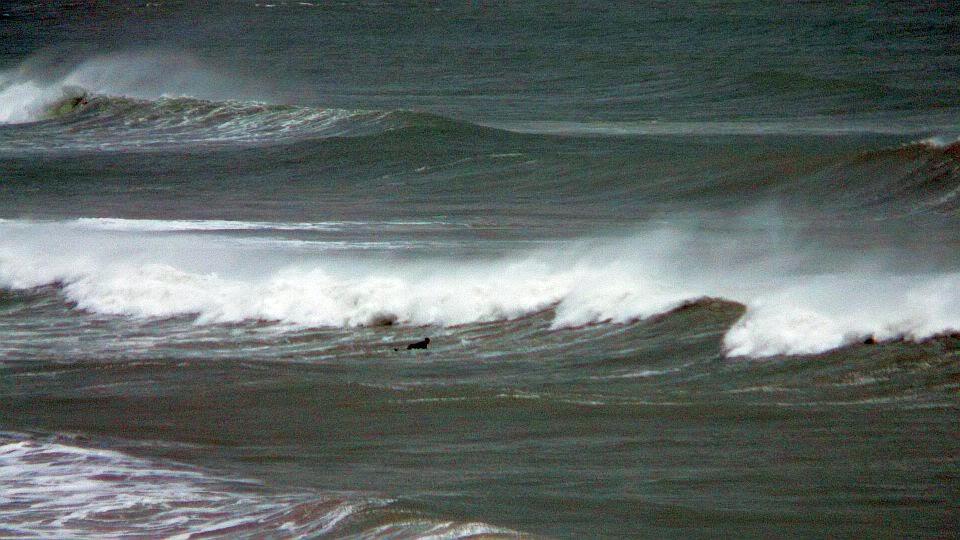 por fin surf en sopelana en invierno 06