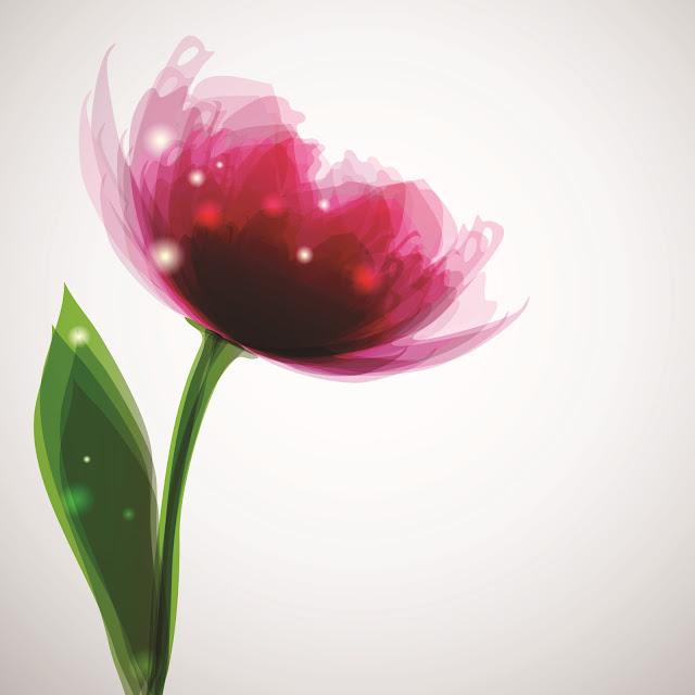 Decal dán kính 3D cảnh hoa
