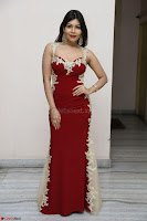 Rachana Smit in Red Deep neck Sleeveless Gown at Idem Deyyam music launch ~ Celebrities Exclusive Galleries 042.JPG