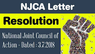 National Joint Council of Action - Resolution