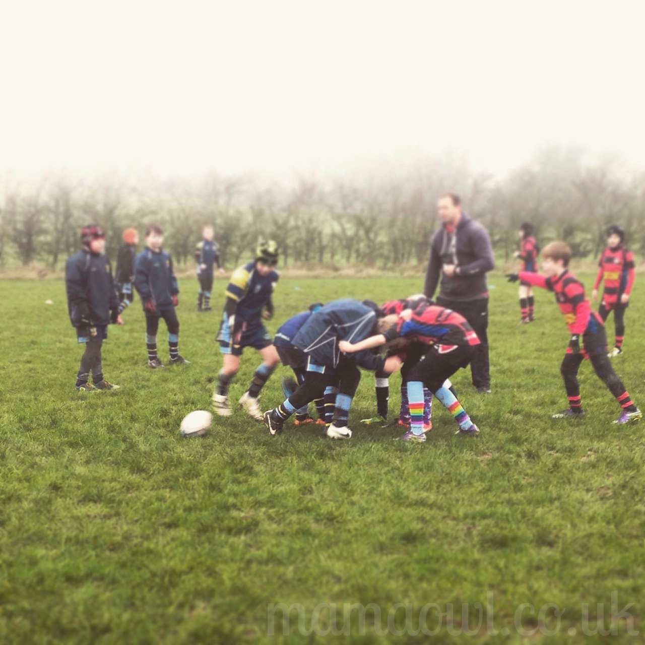 Mama OWL Blog: Sunday Morning Rugby