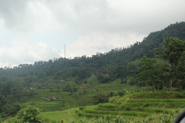 Sawah teras sering di Kabupaten Garut