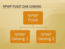Apa itu NPWP Pusat?