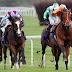 22 Ağustos Yarış Hayatı Riskli Atlar